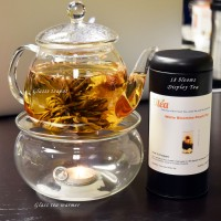 Blooming Tea Gift Set with Glass Teapot & Warmer