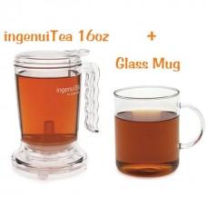 IngenuiTEA Teapot 16oz & Glass Mug Gift set
